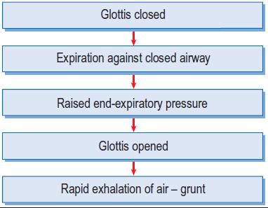 grunting mechanism