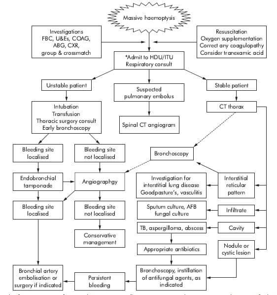 massive hemoptysis management