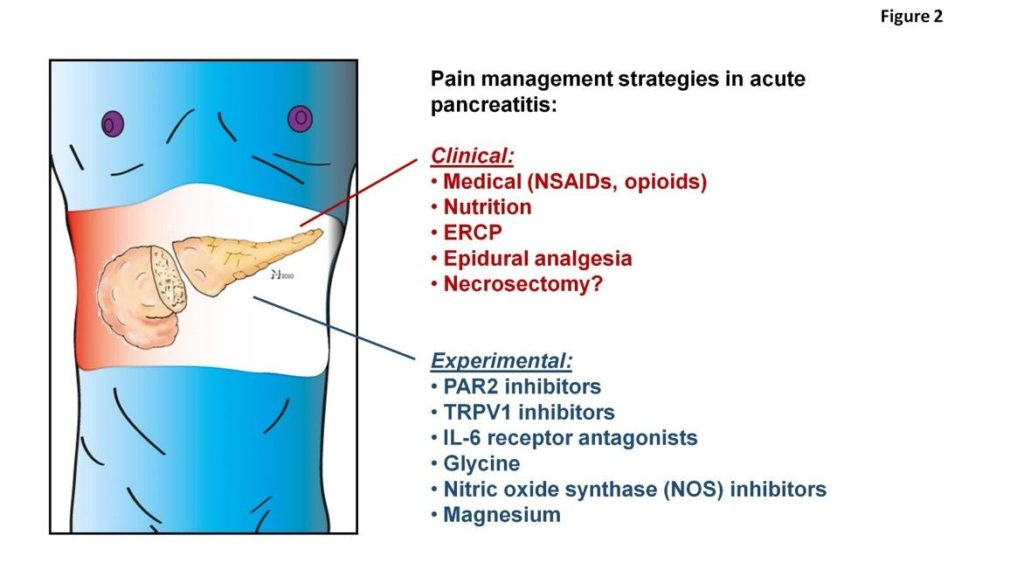 pain management in acute pancreatitis