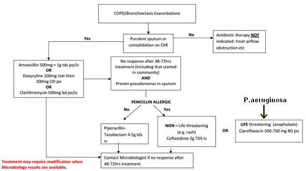 bronchiectasis antibiotics