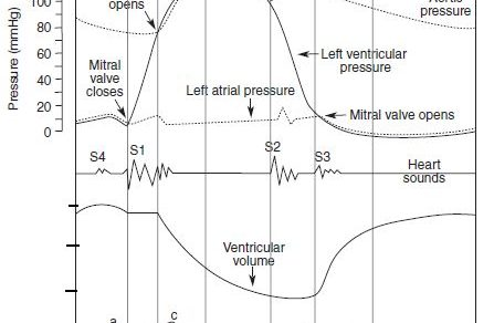 Cardiac Cycle – Summary and Wigger's Diagram