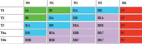 gastric carcinoma staging matrix