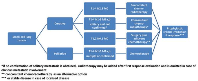 small cell lung cancer approach