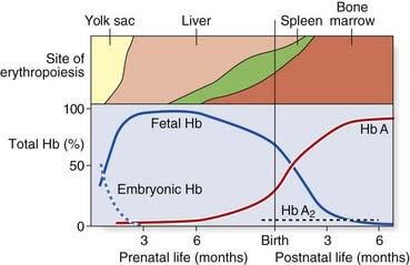hemoglobin switching