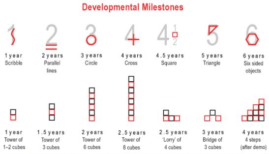 development milestones
