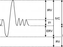 Lung Volumes and Capacities : Mnemonic