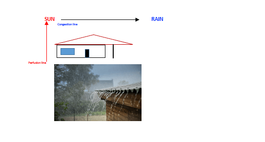 sun and rain classification