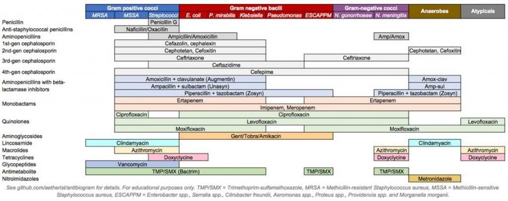 Antibiotic coverage