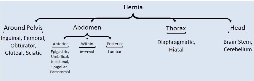 hernia location types
