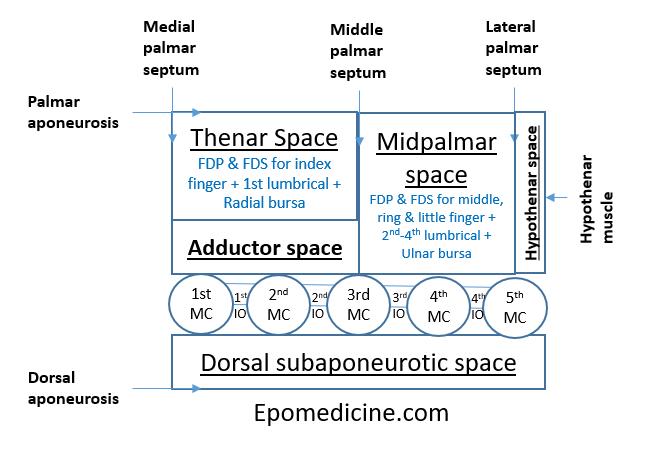 deep hand spaces schematic
